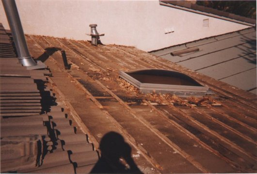 Debris around Skylight Tile